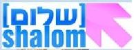 """bundesarbeitskreis """"shalom"""" der linksjugend"""